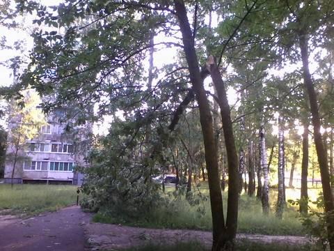 http://sa.uploads.ru/t/oEsuG.jpg
