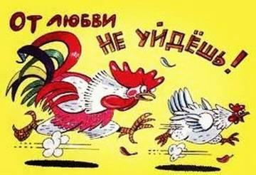 http://sa.uploads.ru/t/oXEYq.jpg