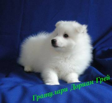 http://sa.uploads.ru/t/ocmCA.jpg