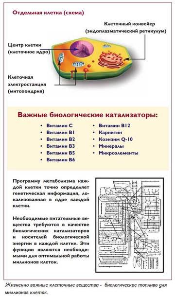 http://sa.uploads.ru/t/otDiR.jpg