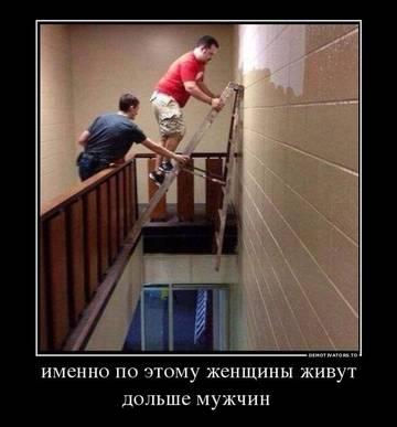 http://sa.uploads.ru/t/pO1BG.jpg