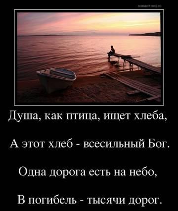 http://sa.uploads.ru/t/qHYQ8.jpg