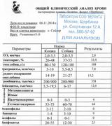 http://sa.uploads.ru/t/qpS6U.png