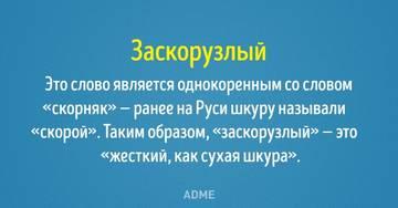 http://sa.uploads.ru/t/rWcaB.jpg