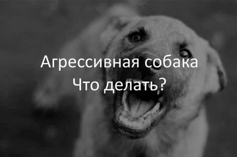 http://sa.uploads.ru/t/sHhUO.jpg