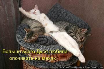 http://sa.uploads.ru/t/sjfC2.jpg