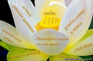 http://sa.uploads.ru/t/t0pM2.jpg