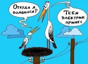 http://sa.uploads.ru/t/t8zlc.jpg