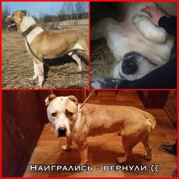 http://sa.uploads.ru/t/uS96i.jpg