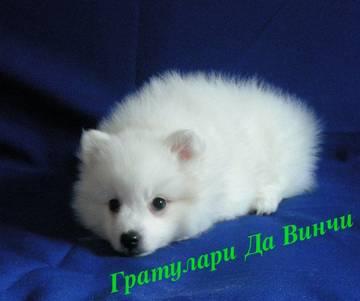 http://sa.uploads.ru/t/urK6E.jpg