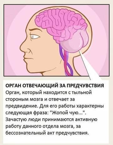 http://sa.uploads.ru/t/vLeDk.jpg
