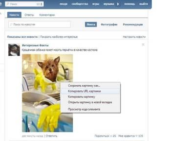 http://sa.uploads.ru/t/wAnDV.jpg
