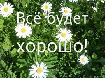 http://sa.uploads.ru/t/wY6lx.jpg