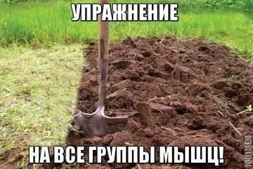 http://sa.uploads.ru/t/weoIL.jpg