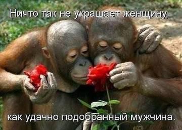 http://sa.uploads.ru/t/x0dz3.jpg