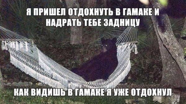 http://sa.uploads.ru/t/x3jmJ.jpg