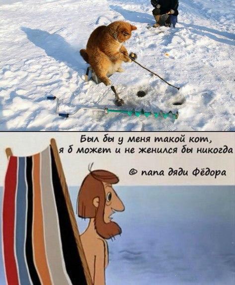 http://sa.uploads.ru/t/xEpQB.jpg