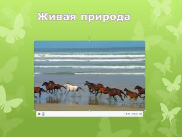 http://sa.uploads.ru/t/xW70H.png