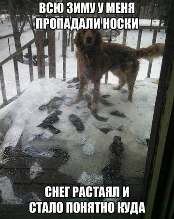 http://sa.uploads.ru/t/xgW6r.jpg