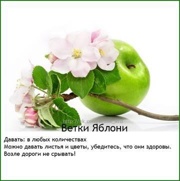 http://sa.uploads.ru/t/xmt5W.jpg