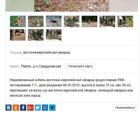 http://sa.uploads.ru/t/yiI2q.jpg