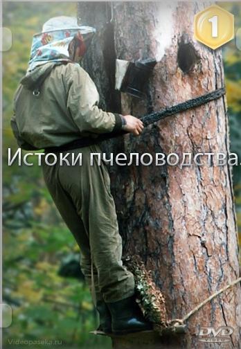 http://sa.uploads.ru/t/zilWI.jpg