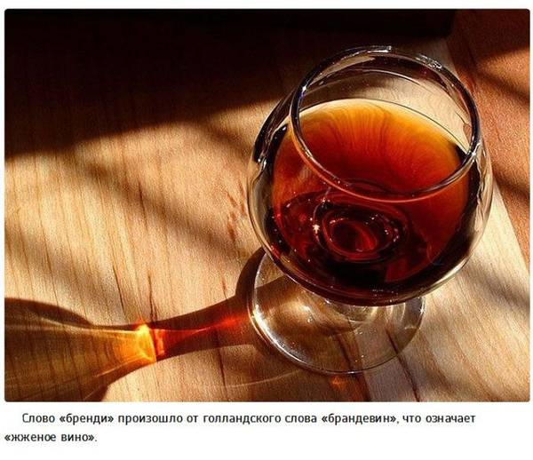 http://sa.uploads.ru/t/zn2Jv.jpg