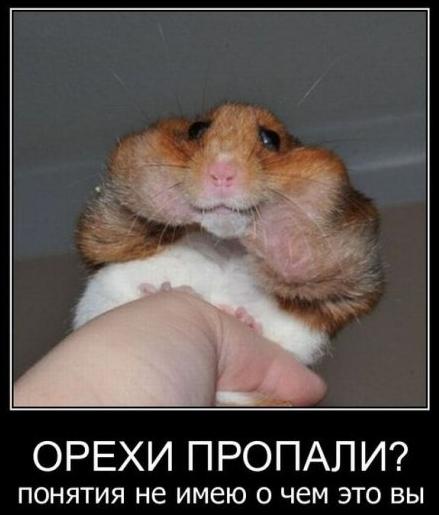 http://sa.uploads.ru/vChay.png