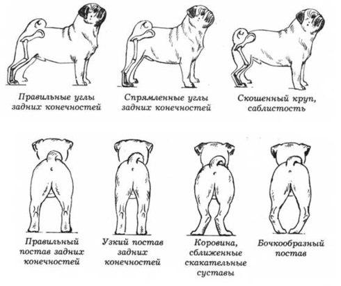 http://sa.uploads.ru/vdyNa.jpg