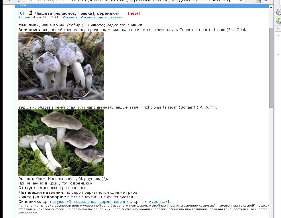 http://sa.uploads.ru/wPzFa.png