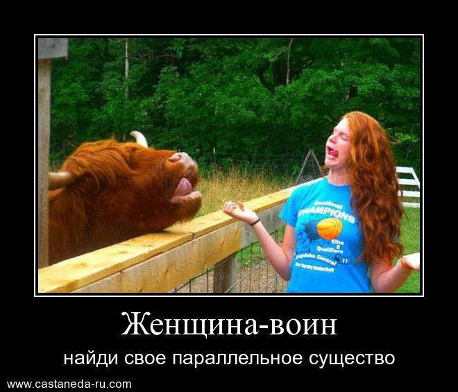 http://sa.uploads.ru/wvHab.jpg