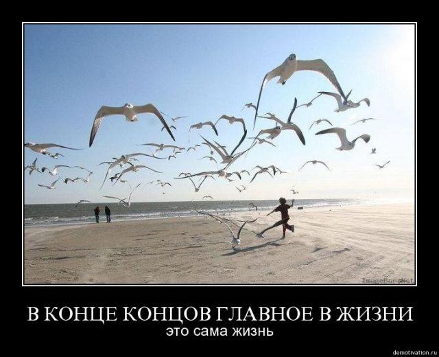http://sa.uploads.ru/xY2bQ.jpg
