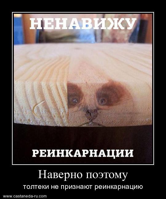 http://sa.uploads.ru/yQ3qr.jpg