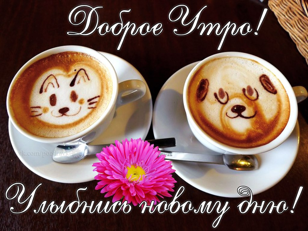 http://sa.uploads.ru/zI8nh.jpg
