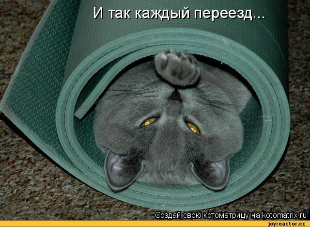 http://sa.uploads.ru/4Dv96.jpg