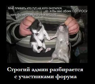 http://sa.uploads.ru/6G4eY.jpg