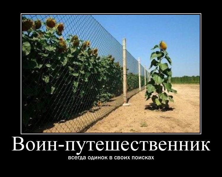 http://sa.uploads.ru/6mUby.jpg