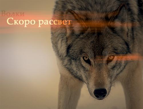 http://sa.uploads.ru/94izd.jpg