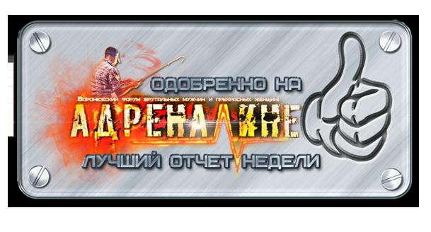 http://sa.uploads.ru/9jldg.png