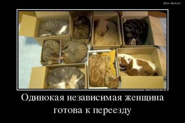 http://sa.uploads.ru/AYxdF.jpg