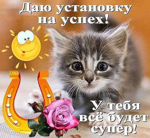 http://sa.uploads.ru/ZxtDL.jpg
