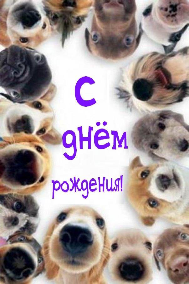 http://sa.uploads.ru/cnek9.jpg