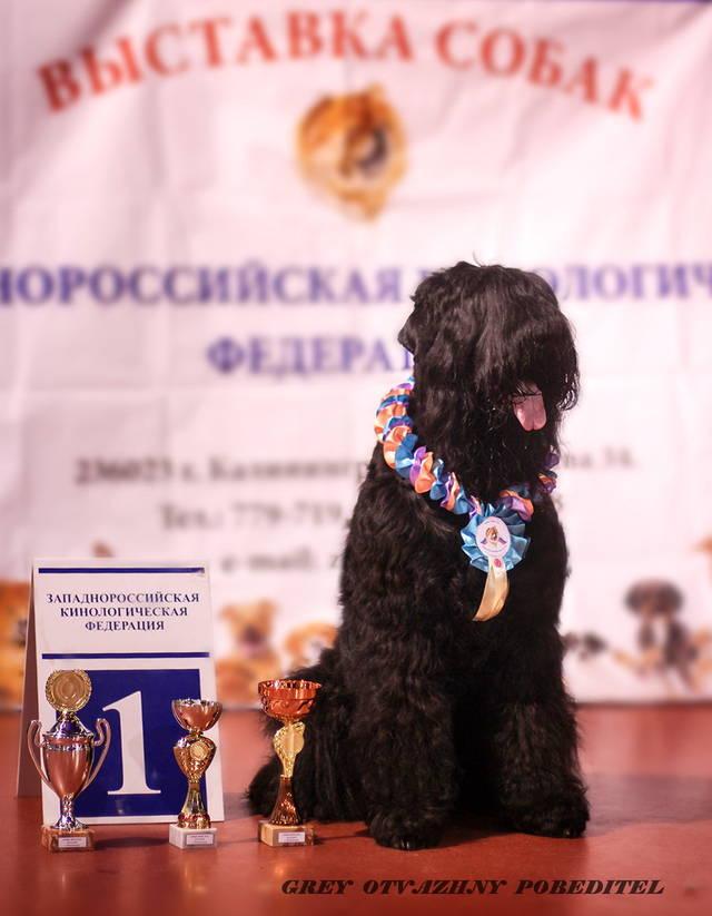 http://sa.uploads.ru/fpGsJ.jpg