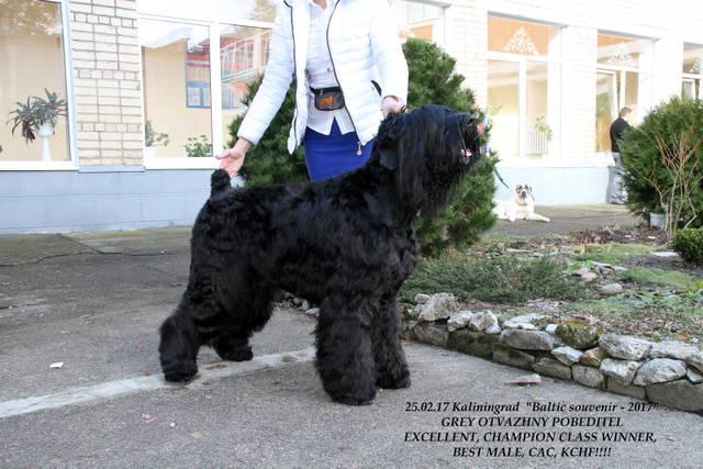 http://sa.uploads.ru/gT0Mq.jpg