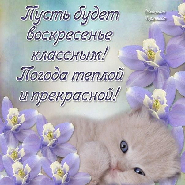 http://sa.uploads.ru/qb21f.jpg