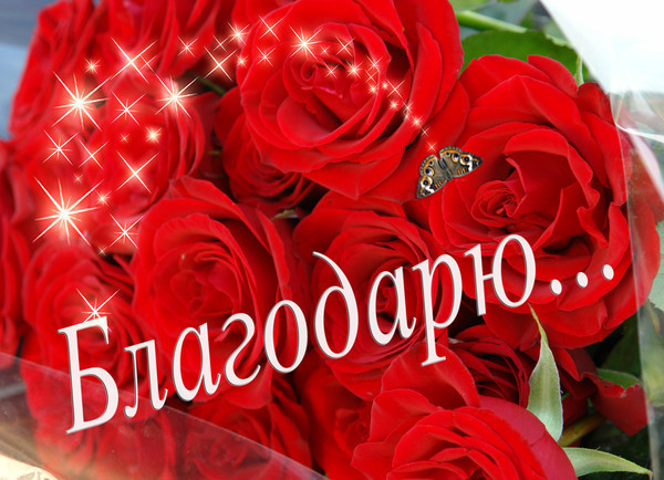 http://sa.uploads.ru/sOAgV.jpg