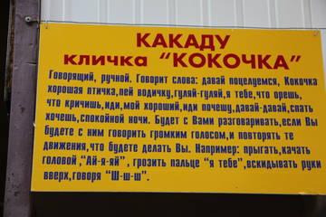 http://sa.uploads.ru/t/16HYa.jpg