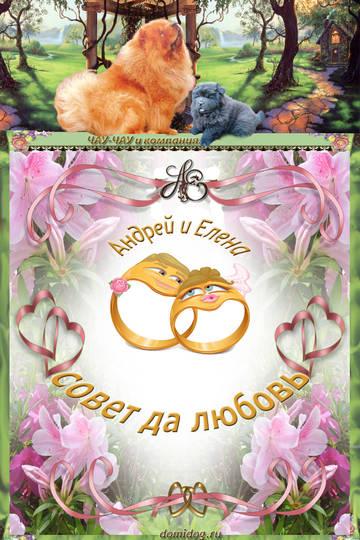 http://sa.uploads.ru/t/1Yntx.jpg
