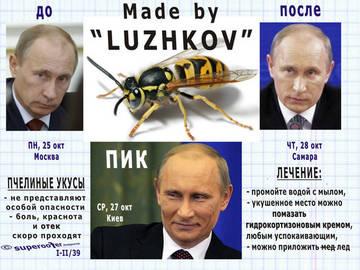 http://sa.uploads.ru/t/5a47d.jpg