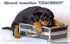 http://sa.uploads.ru/t/8qR7b.jpg